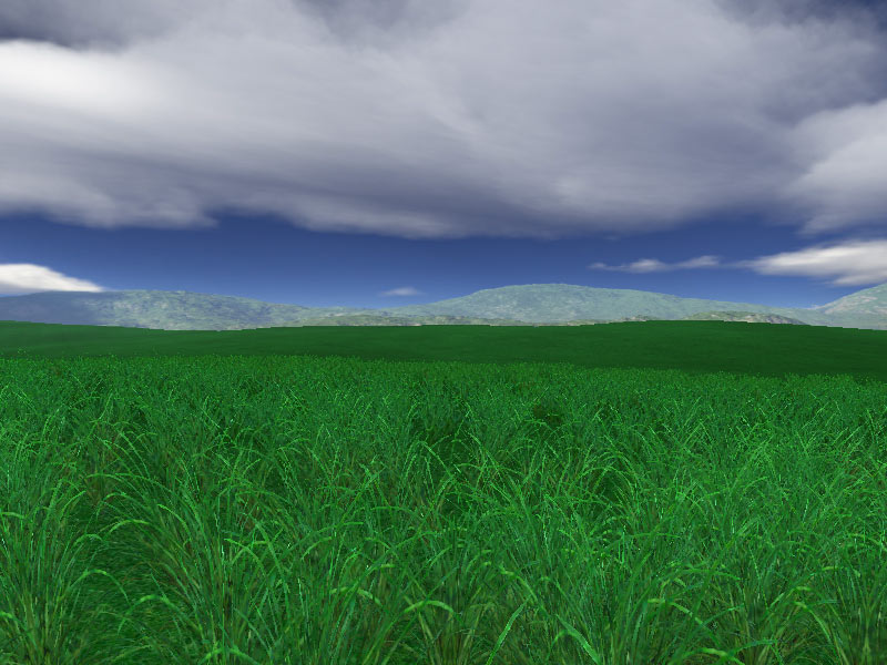Green Fields 3D Screensaver: Enjoy The Beauty Of Lush