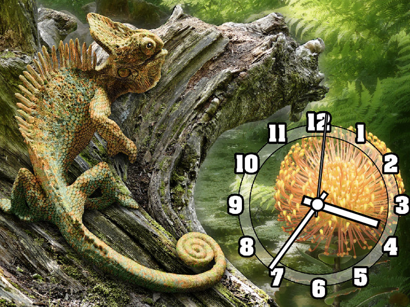 Chameleon Clock ScreenSaver