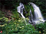 Charming Waterfalls screensaver: add a magic window of ceaseless Joy to your PC!