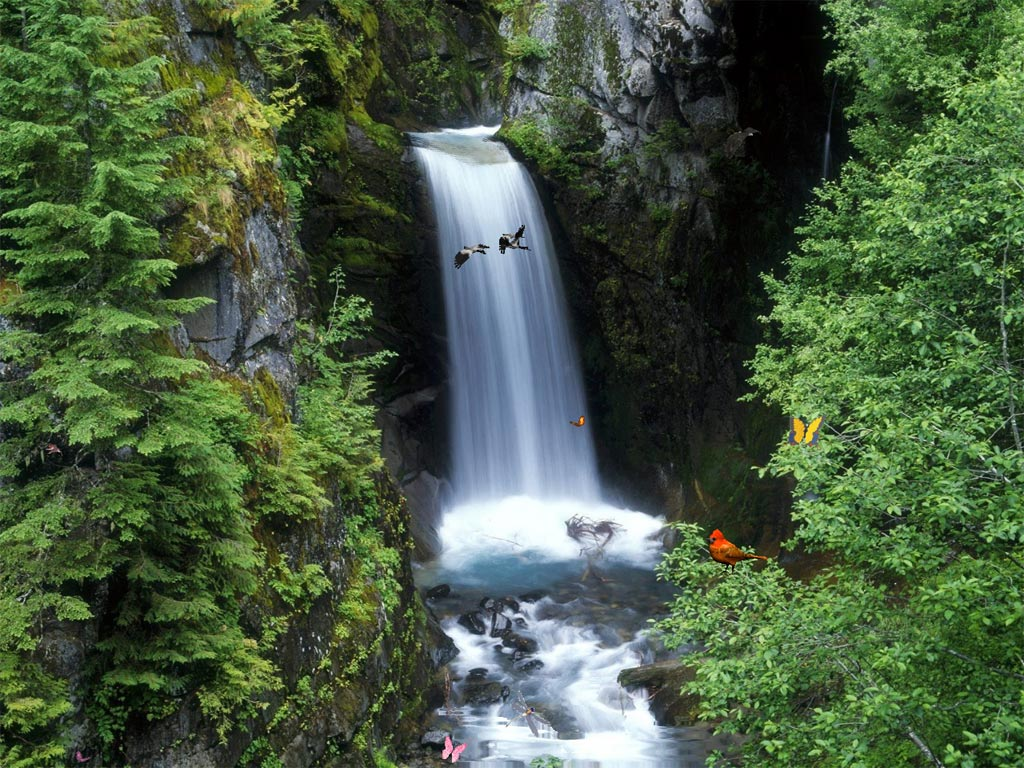 ... Waterfalls. Fairy creatures living there invite you to turn your