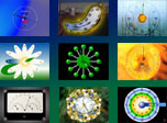 Get 14 lively Clock screensavers in one single bundle: Aurora Clock, Sun Clock, Salvadore Dali Clock and more. Clock manager is included.