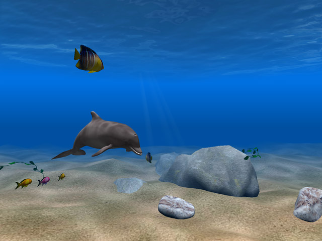 Download Living 3D Dolphins ScreenSaver for Windows 10,7,8 ...