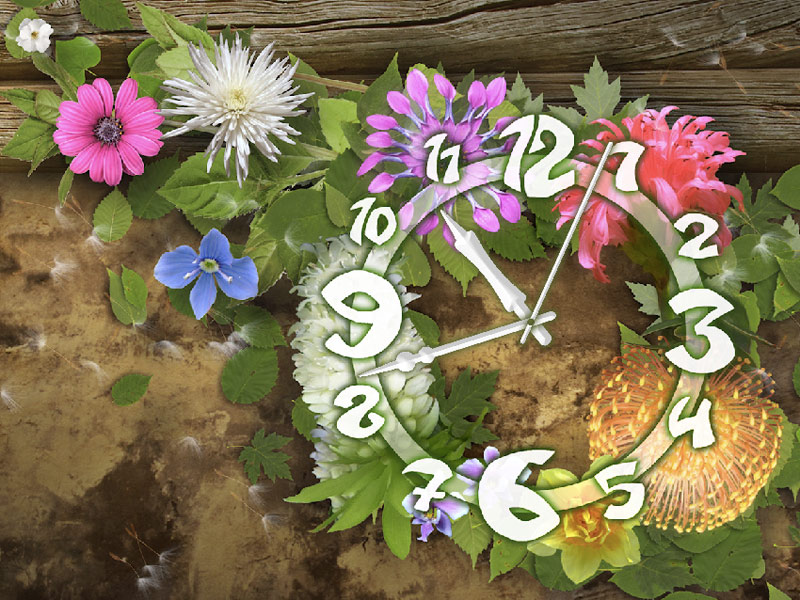 Flowers Clock ScreenSaver