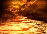 Glitter Autumn River screensaver and live animated wallpaper for Windows and Android