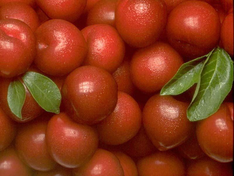 http://7art-screensavers.com/screenshots/fruits/red-fruits.jpg